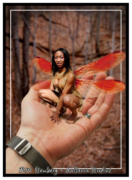 beyond Maryland Apr 07, 2008 RW Stenberg - Aalterra Studios Bird in hand