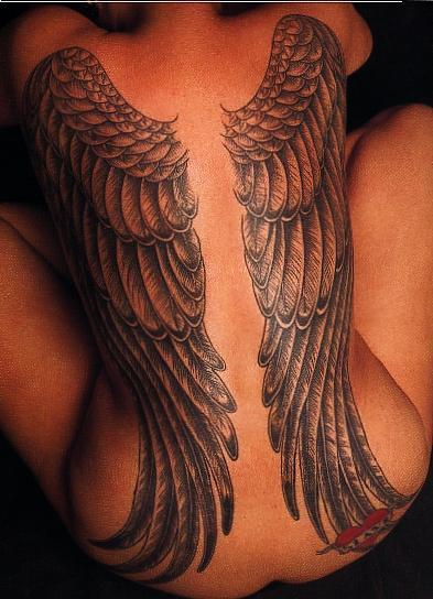 paris Apr 21, 2008 christiang Wings in back