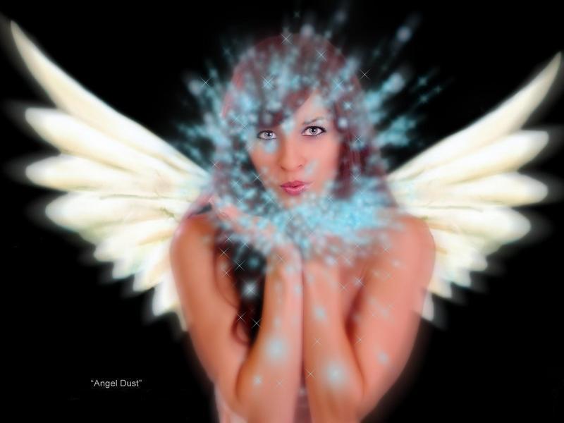 Apr 22, 2008 Angel Dust