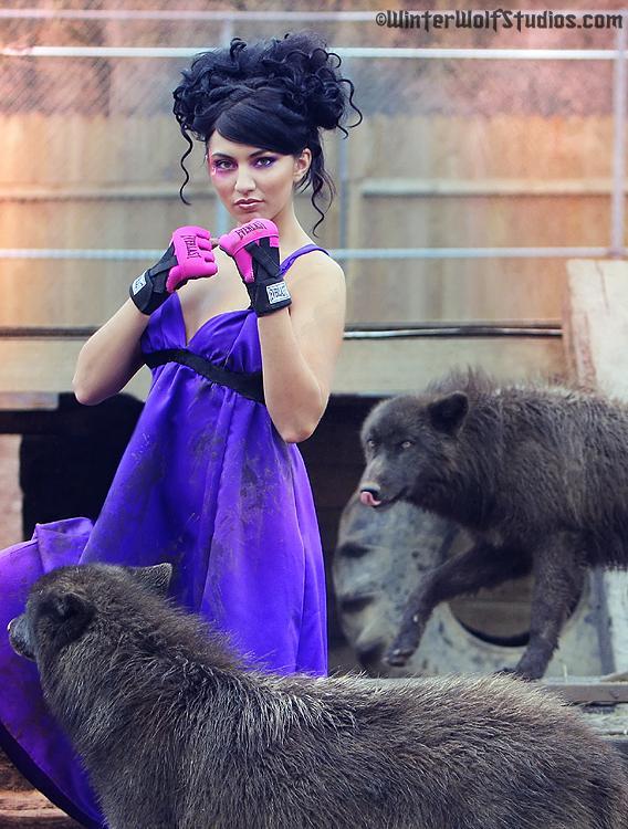 indiana May 01, 2008 winterwolf studios wolf creek habitat Tear sheet Viscious Magazine