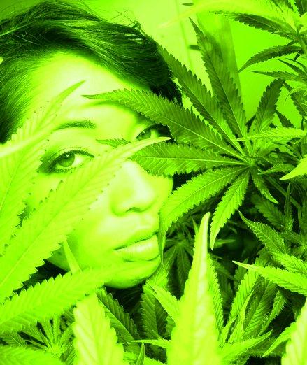 SF May 15, 2008 keepin it green
