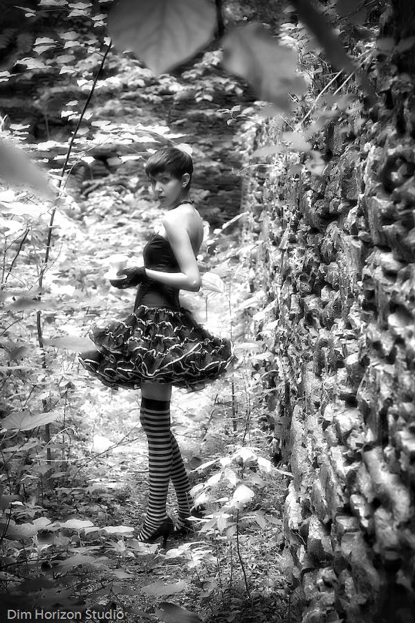 May 31, 2008 Dim Horizon Studio Dark Alice In Wonderland Tea Party