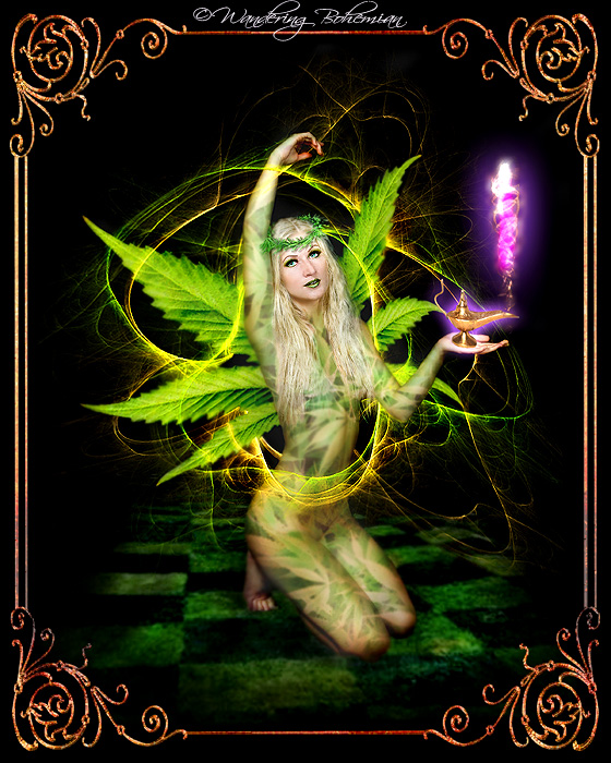 project for High Times magazine Jun 15, 2008 Ivy D. / Wandering Bohemian Psychedelic Tinkerbell