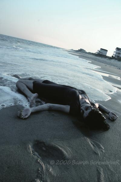 Jul 01, 2008 Scarah Screwdriver Washed up.