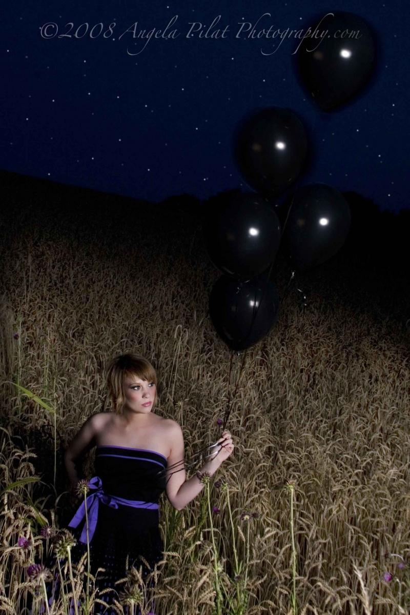 Shillington, PA Jul 11, 2008 Angela Pilat Photography.com Starry Night