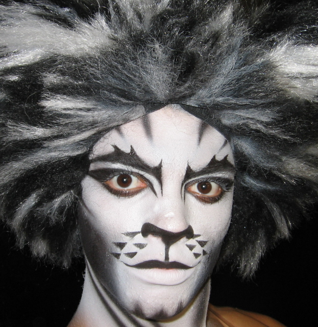 Jul 13, 2008 Cats the musical.