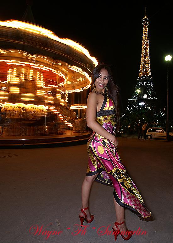 Paris France Jul 29, 2008 Wayne FLI Summerlin 07 I miss Paris.  But I really miss Tara