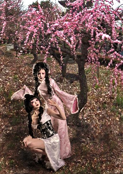 Jul 29, 2008 Original photo: Zygore. Digital manipulation: Vicious Dolls. Models: Jane & Sindy kat.