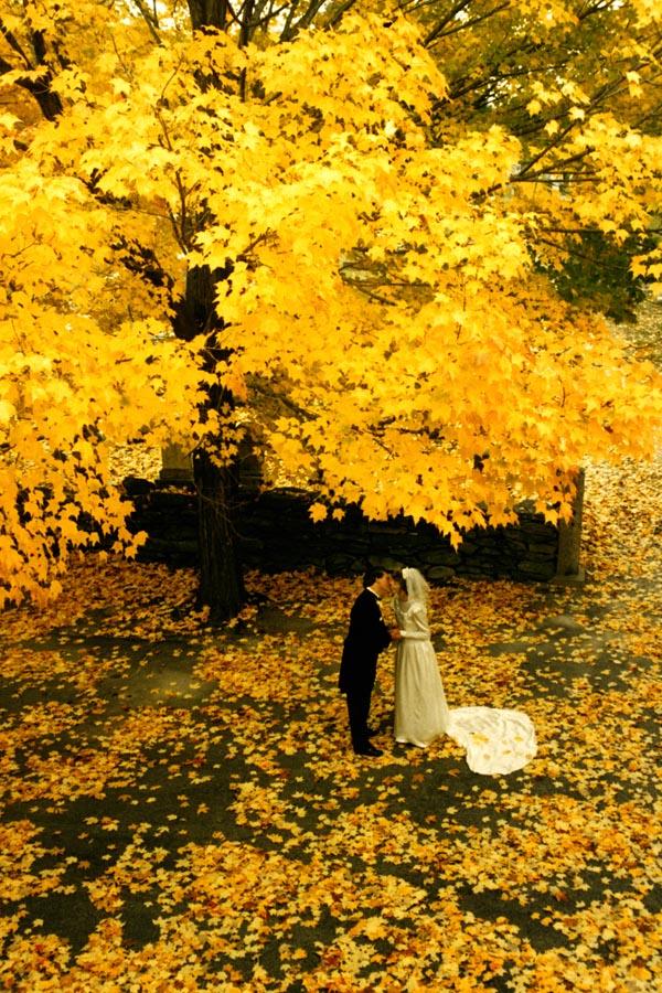 Massachusetts Jul 31, 2008 (c) Cape Photographer Autumn Wedding