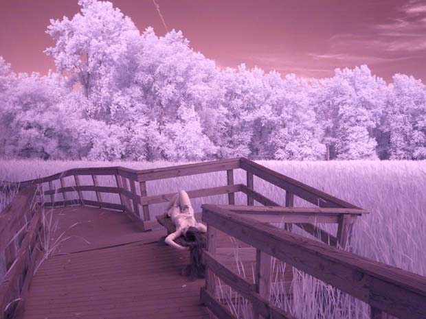have you ever tried to walk on a terribly crooked boardwalk in heels? Jul 31, 2008 Keith Broadhurst infrared lense used on a digital camera. I am not wearing white, but red.
