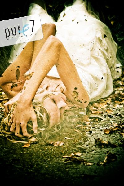 Aug 24, 2008 Pure 7 Studios Trashing my Wedding Dress