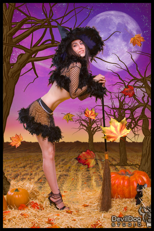 Clearwater Sep 01, 2008 Dave Parker & DevilDog Studio Happy Halloween From Kayla The Good Witch