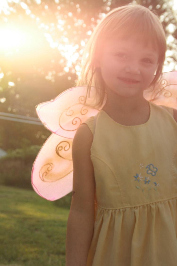our garden Sep 02, 2008 Aeonz fairie butterfly!