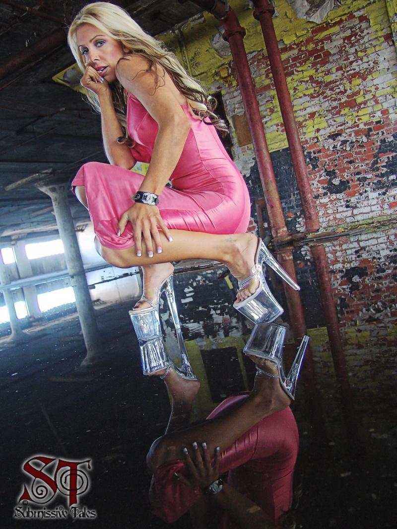 Detroit, Michigan USA Sep 11, 2008 2008 Submissive Tales, Fuzzytek True reflections w Jenna