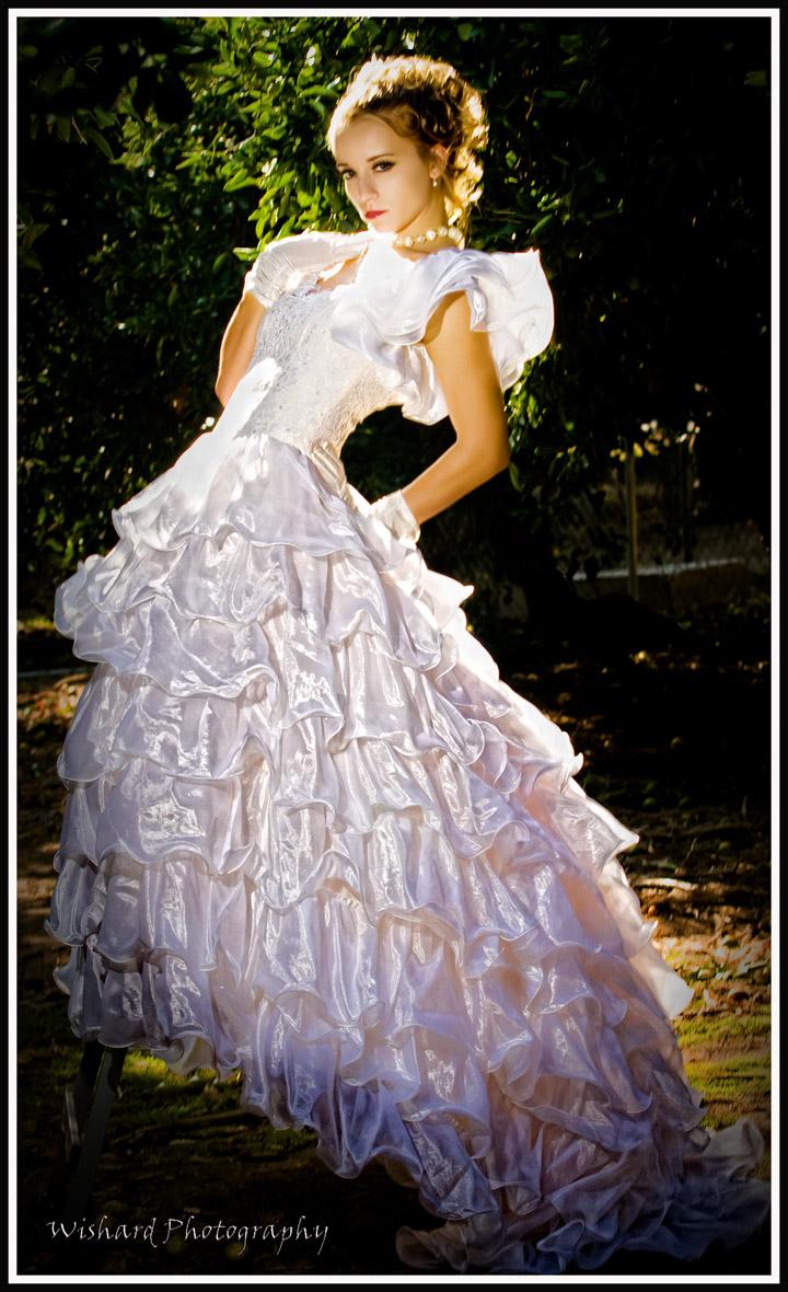 September 08 Morjane project Sep 25, 2008 Nancy Wishard Vintage gown