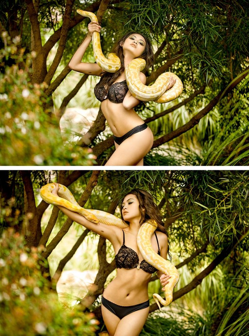 The Garden of Eden Oct 13, 2008 Briana Photography Albino Burmese Python