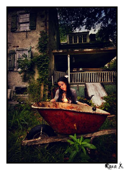 PA Oct 22, 2008 rana x. photography the birds - Nicola