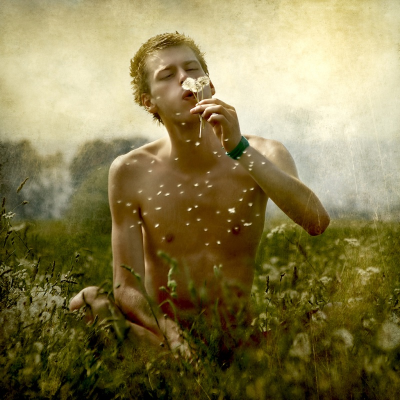 Transylvania Oct 23, 2008 istvan Kadar Photography Blow Away Dandelion