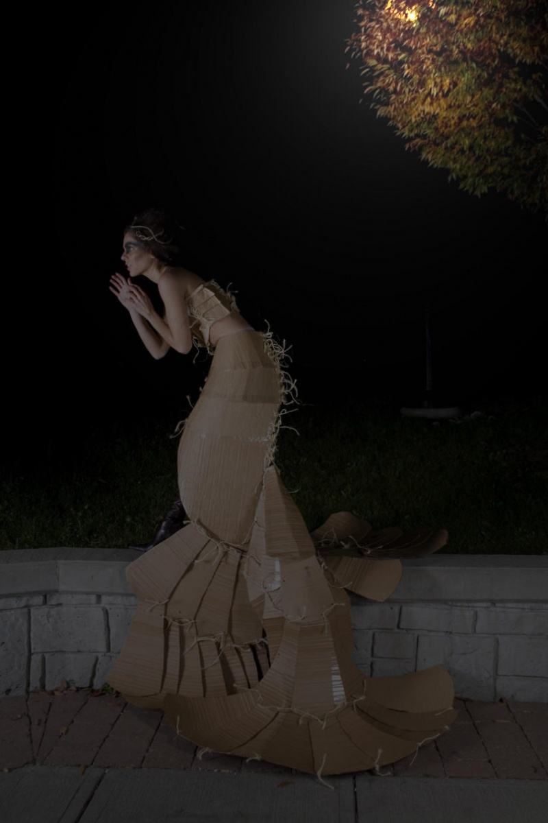 Rochester NY Oct 29, 2008 Siro Design Haute Couture cardboard shell Gown