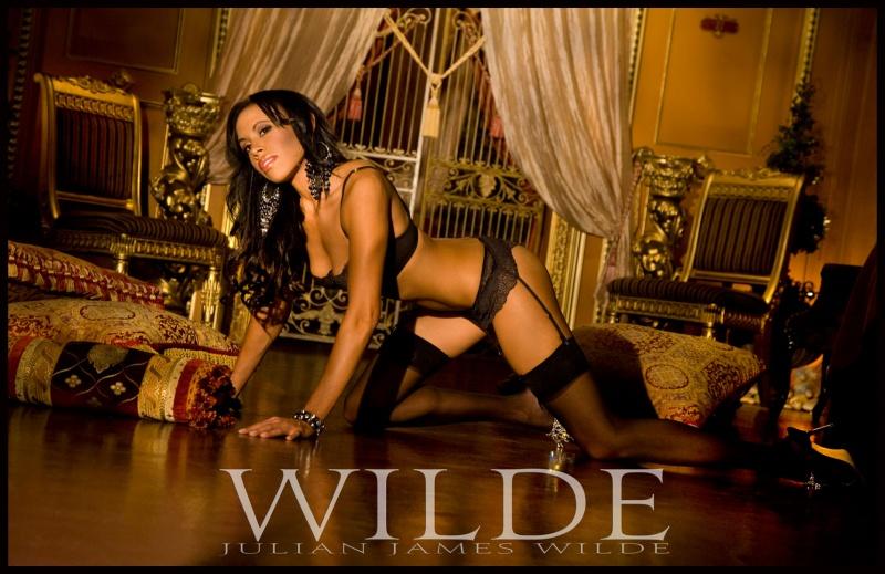 Wild studio,Grand Salon Oct 31, 2008 Julian James Wilde 2008 Wilde Vision