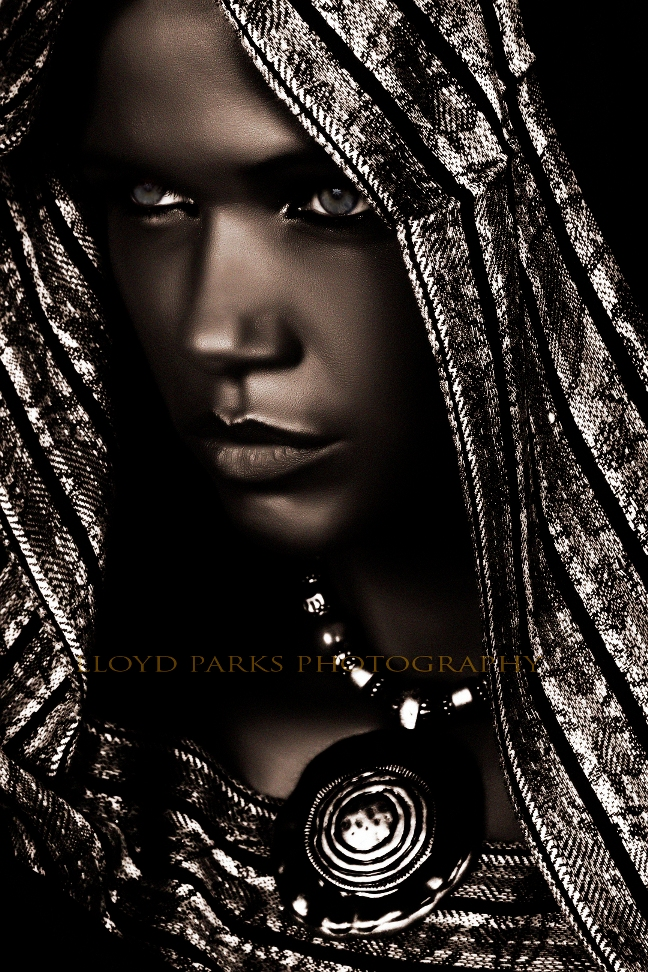 Oct 31, 2008 Creative concept by Flawless Face  (yes she changed my whole skin tone)!! The Kat Livingston Collection By Lloyd Parks