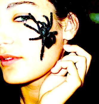 Nov 05, 2008 Lisa Lombardo 2008 Yes, the spider is real.. my pet.. Dunkan! :]