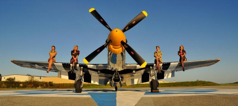 Nov 12, 2008 Christian Kieffer P-51 army pinups