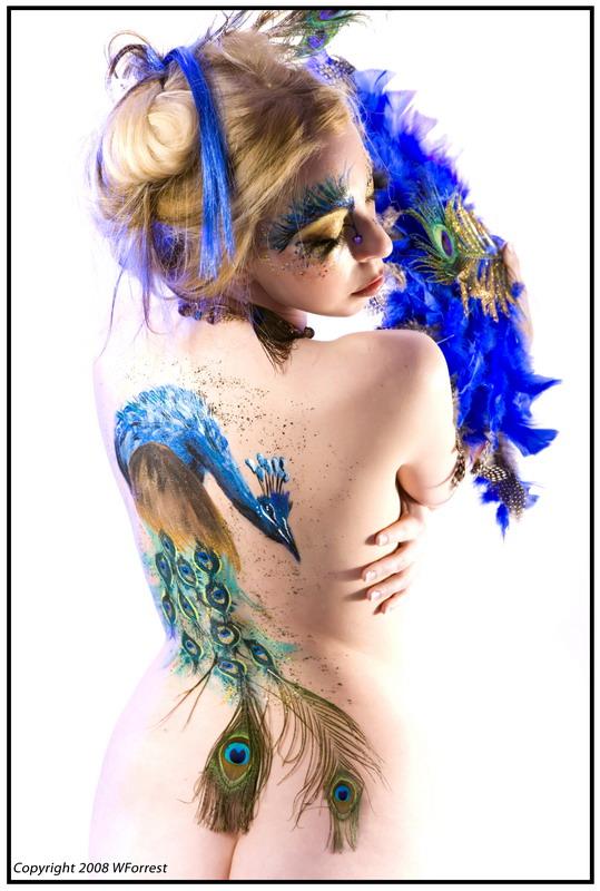 Dartmouth, NS, Canada Nov 12, 2008 WForrest Photography Peacock