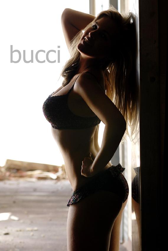 Nov 18, 2008 Bucci 2008 Ele