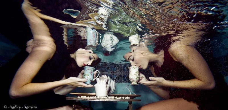 Nov 19, 2008 Tea Party