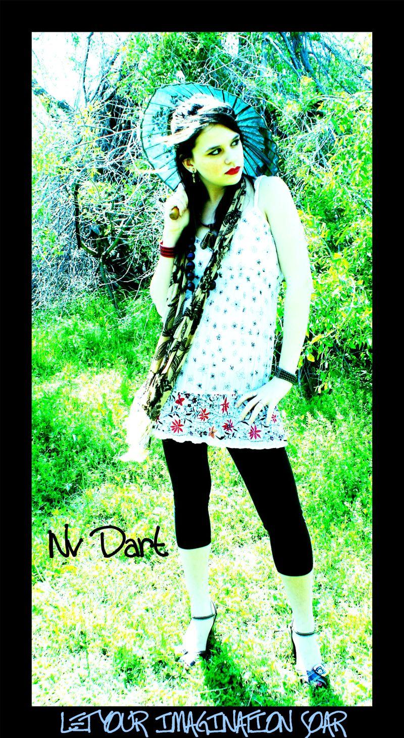 Nov 21, 2008 Nv Dart