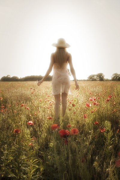 York way somewhere in a poppy field Nov 30, 2008 Mar Pierce This is my fave pic ive ever had taken , love it