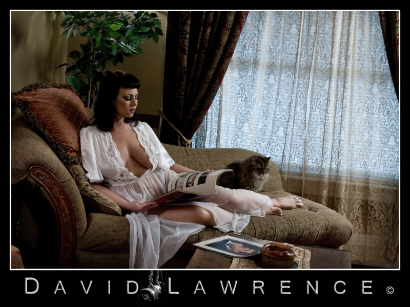 PA Dec 01, 2008 David Lawrence, Nov 30, 2008 Chaise Lounge--FOR SALE!