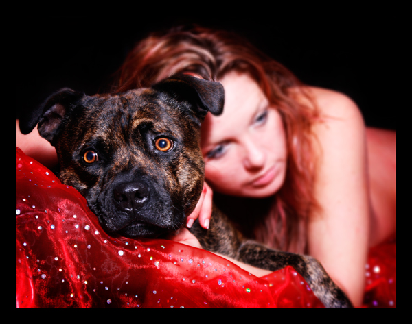 Tarleton Dec 02, 2008 Matt Lowe The Protector and the Protected (this is my dog, Luke aka Noo Noo aka Brown Bear)
