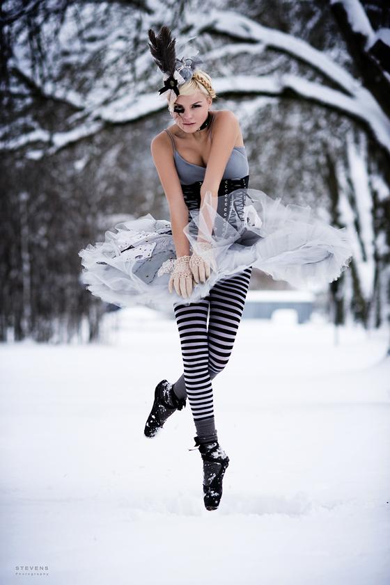 Dec 02, 2008 Frozen Swanlake
