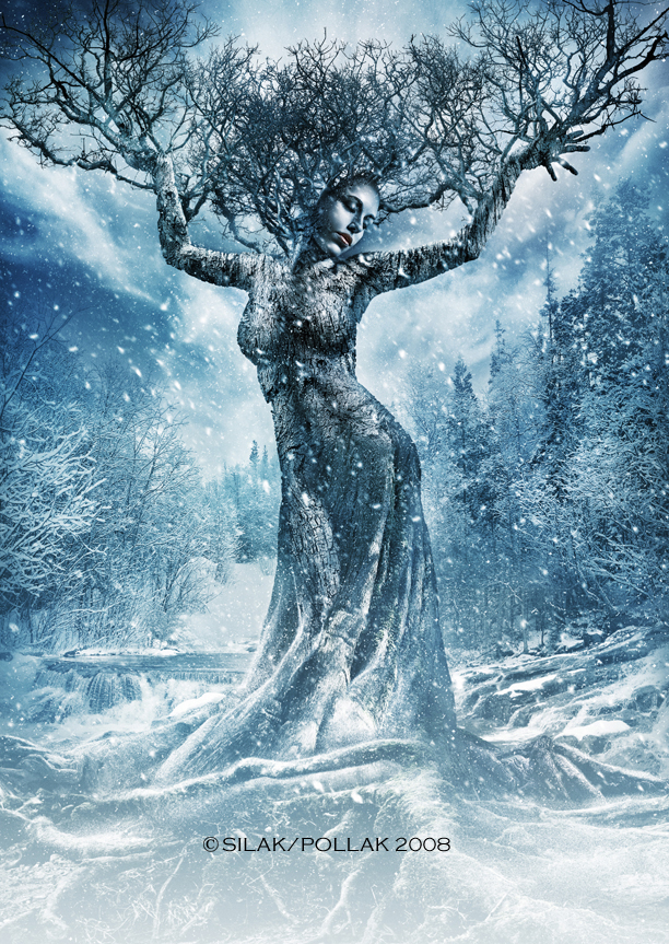 Winter Wonder Land Dec 02, 2008 Brian T Silak Its cold outside........ even as a tree lady