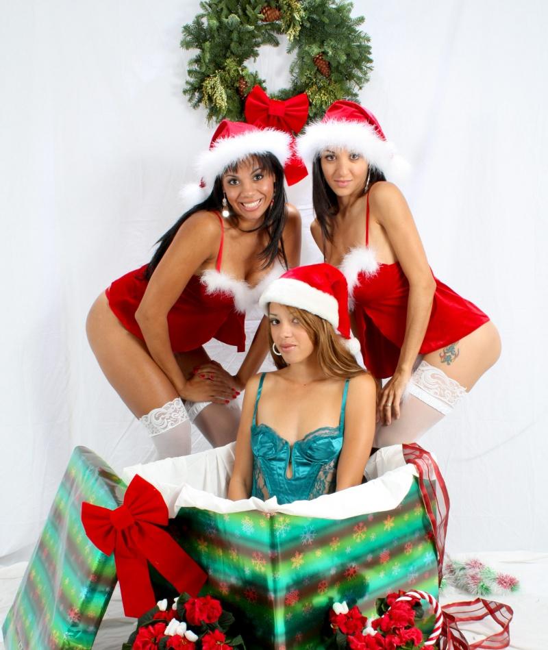 Studio Dec 07, 2008 Merry Christmas Everyone!   From Trudy, Cori, & Delilah!