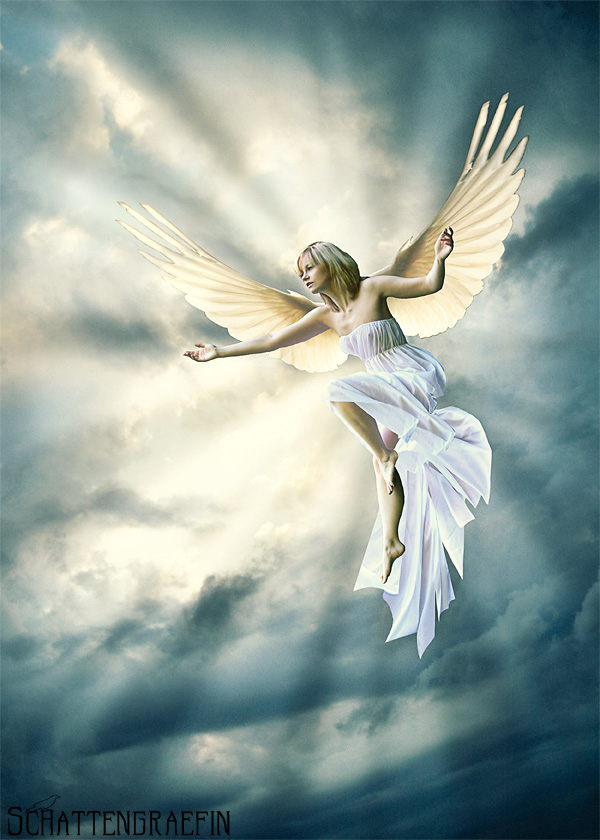 sky :-)))) Dec 11, 2008 schattengraefin - PhotoCountess angel