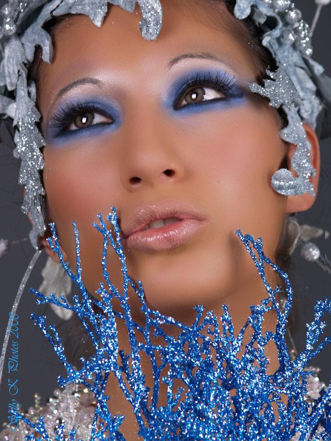 Montgomery IL Dec 12, 2008 Sally K Photos Silver Faery
