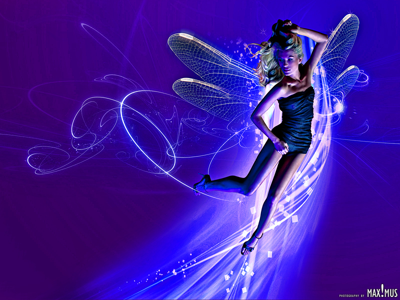 Dec 20, 2008 © MAX!MUS Fairy