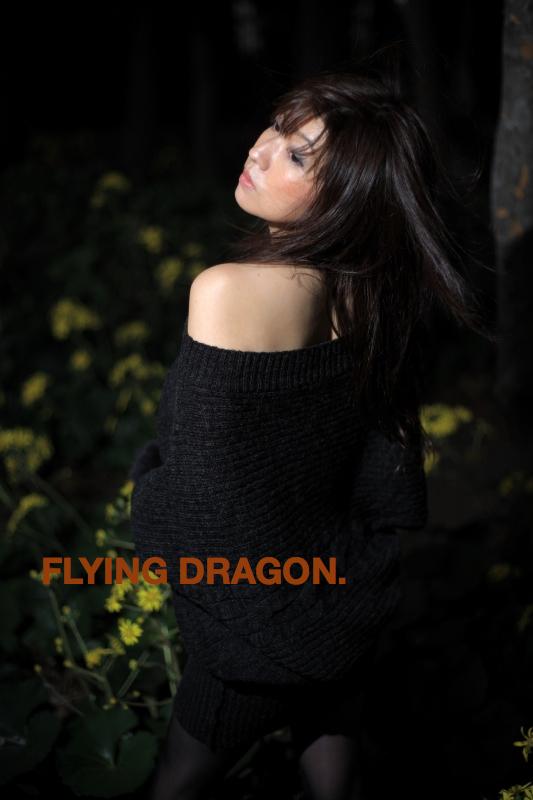 odaiba,Tokyo Dec 22, 2008 Tatsu Dragon Ishiduka COPYRIGHT ALL RIGHTS RESERVED kayo:model