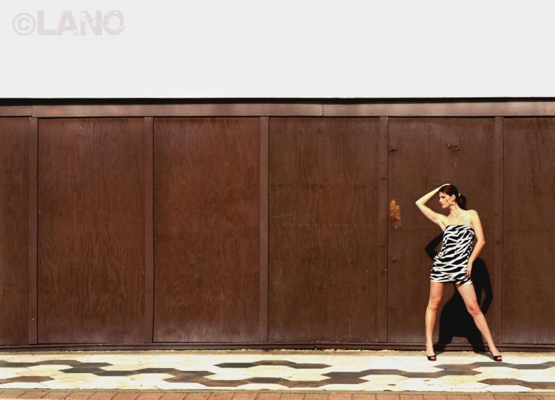Jan 07, 2009 Lano Design