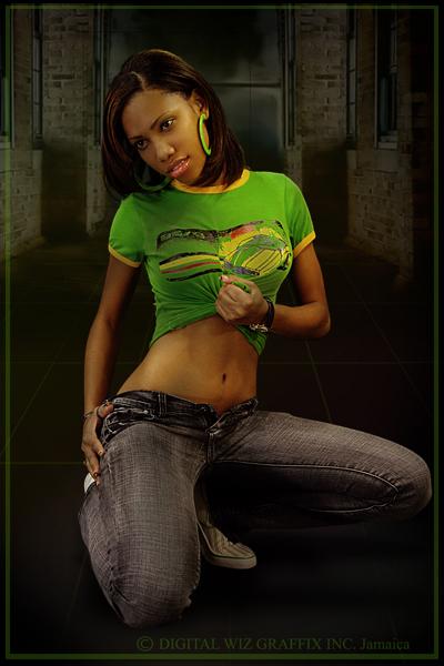 Jan 07, 2009 digital wiz photography