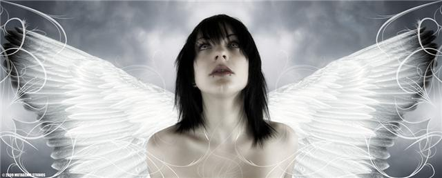 Jan 20, 2009 Mutagenic Studios Angel of light