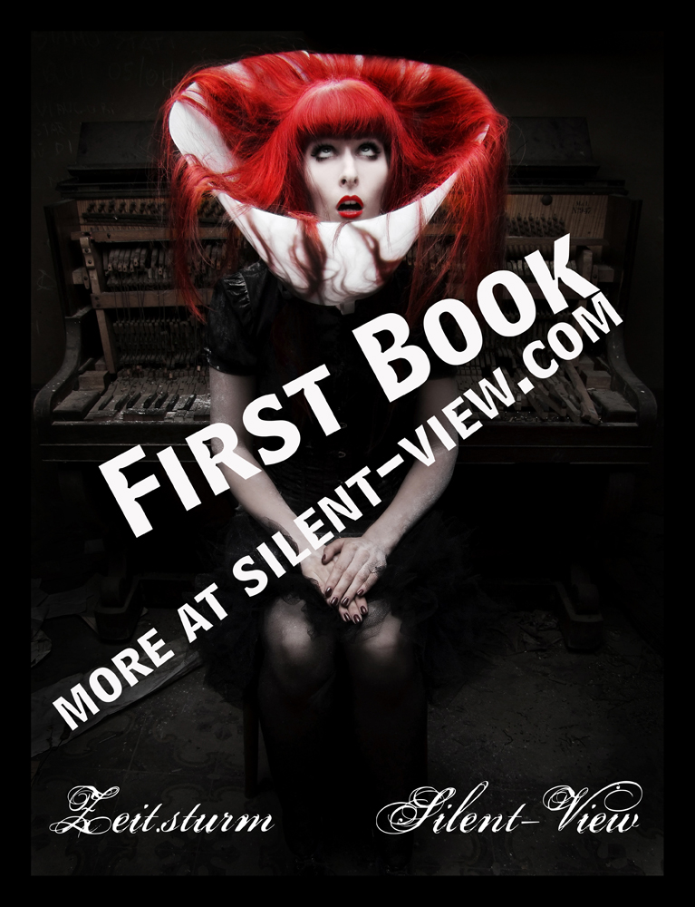 Jan 31, 2009 www.silent.-view.com FIRST BOOK AVAILABLE NOW!
