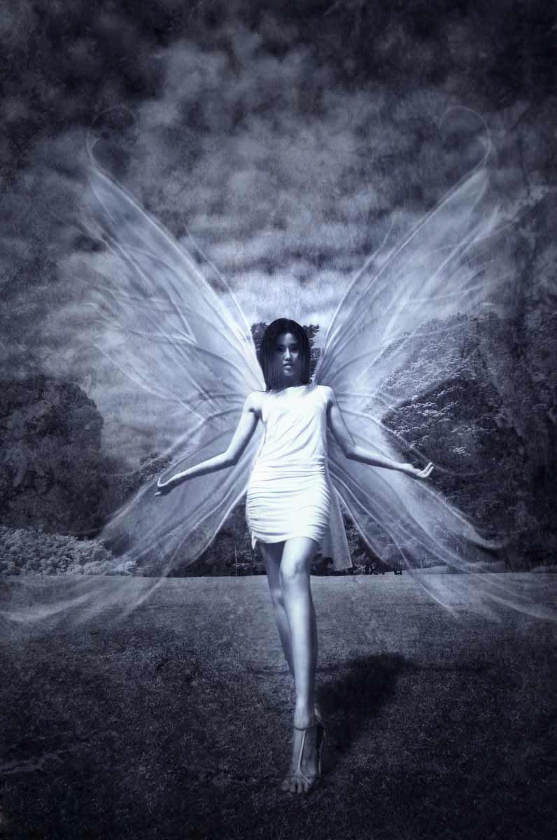 sg Feb 04, 2009 Chris angel wings