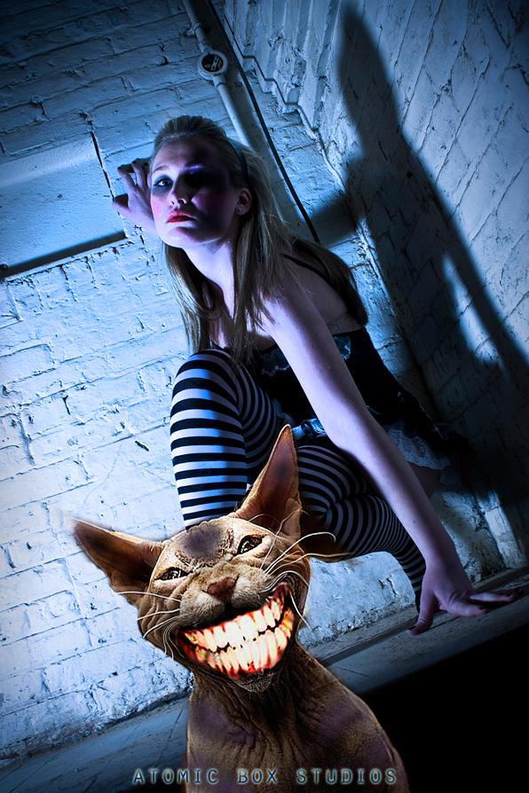 Studio Feb 06, 2009 Atomic Box Studios Dark Alice series / Cheshire Cat
