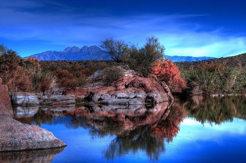 Arizona Feb 23, 2009 Paul B Moore Desert Pond