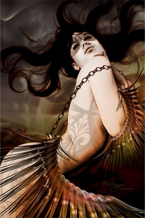 Feb 23, 2009 Gypsy