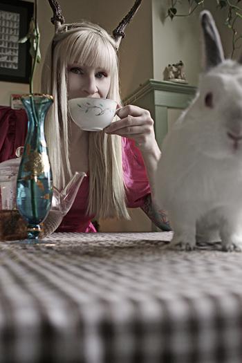 Mar 08, 2009 2008 Wonderland   ( check out Lilys band http://hankandlily.com/)